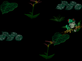 Windows Screensaver - Jungle.png