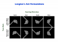 Langton's Ant Permutations.png